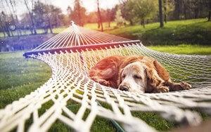 לחץ בעבודה - לכו לנוח